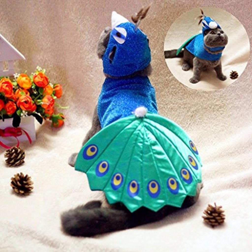 Cheap Cat Costumes & Cat Outfits - Shark, Rabbit, Tuxedo, Peacock