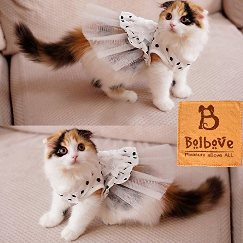 Ipet Princess Floral Cat Party Bridal Wedding Dress Small Dog Flower Tutu Ball Gown